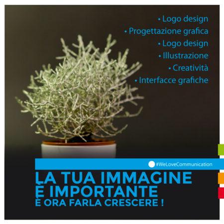 DomesticTree-comunicazione-cuneo-grafica-design