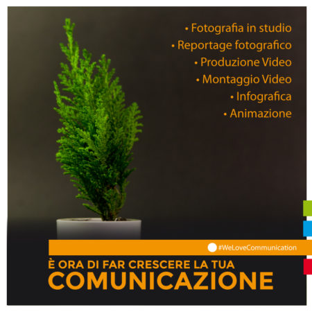 DomesticTree-comunicazione-cuneo-foto-video